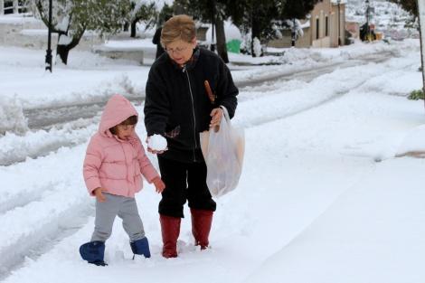 Facheca-sneeuw