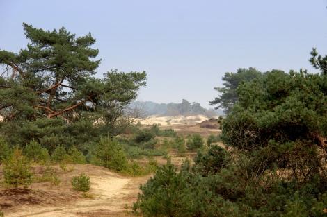 Vliegdennen-Kootwijk