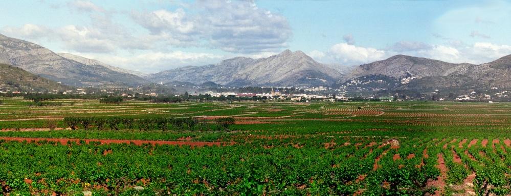 Panorama-1995-Xalo
