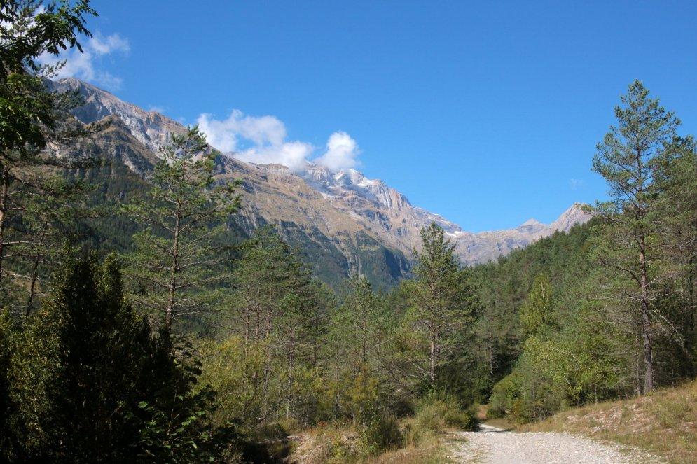 valle-pineta-img_0323